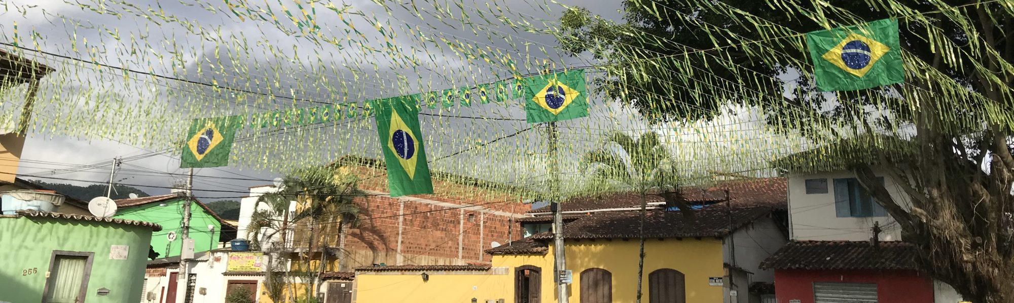 The Making of Modern Brazil: Marginal Spaces, Race and Modernity